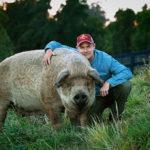 Tout est possible - The biggest little farm
