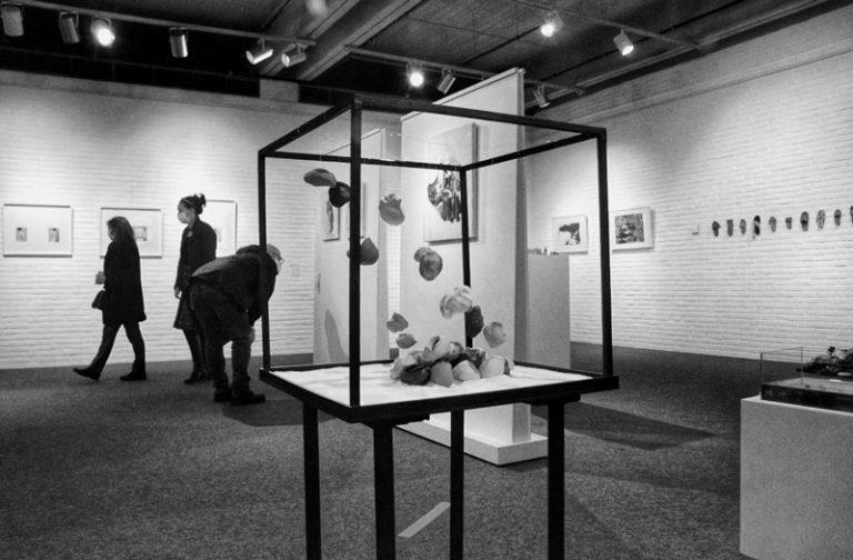 Exposition d'Arts Plastiques et Visuels de Nivelles. Vue sur une oeuvre, des visiteurs en arrière plan