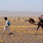 Exploration du monde - Maman, c'est encore loin le désert ?